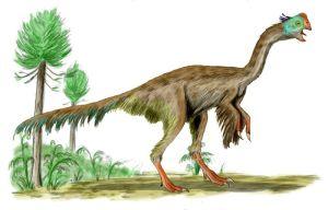 Gigantoraptor_BW[1]